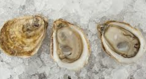 MOMMA MIA OYSTERS on the half shell