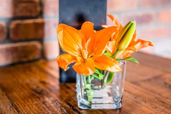 A vase with two lily flowers