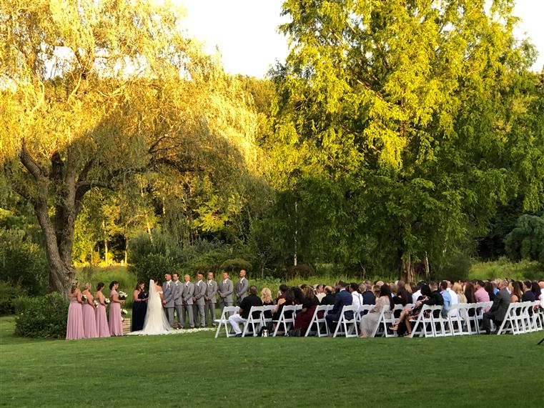 Bridal Party Under Our Willow tree