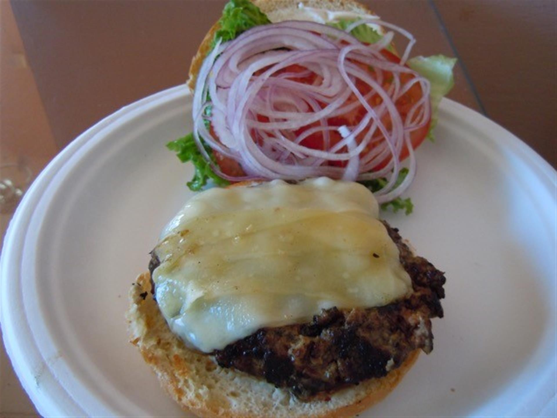 Burger with Cheese and onion