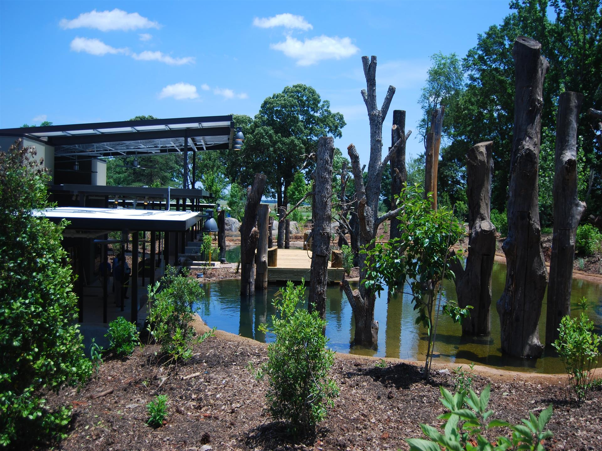 View of the pond in the front of the building with trees in the pond