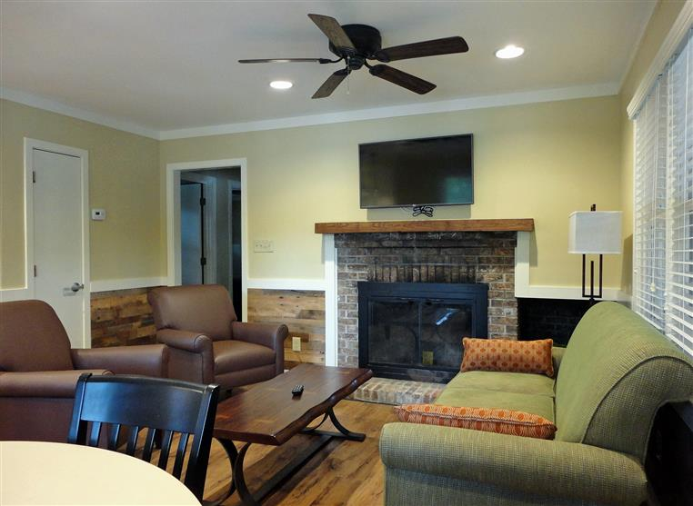 Living room - tv, ceiling fain, green couch, fireplace