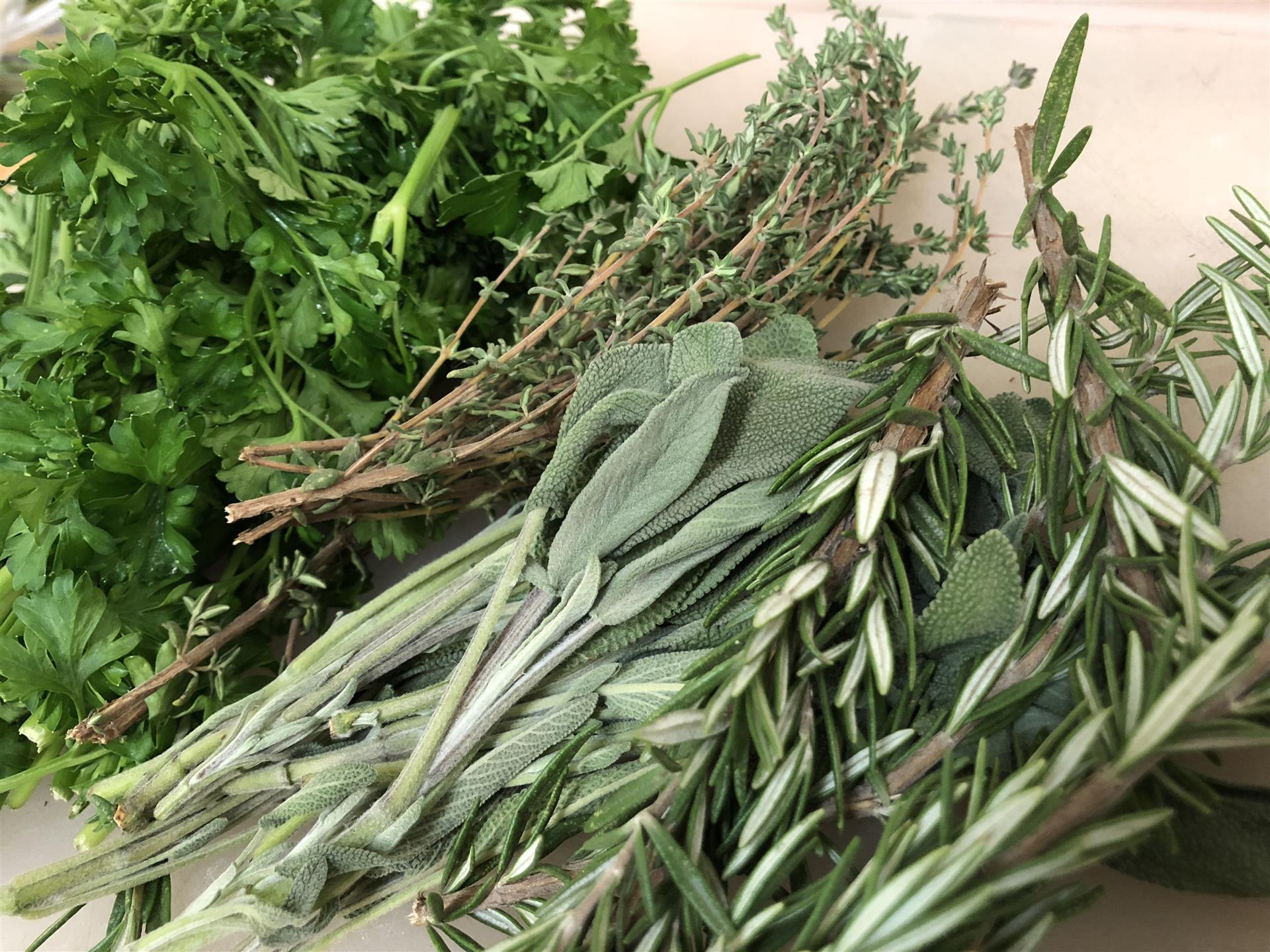fresh cut herbs including sage, rosemary, thyme and parsley