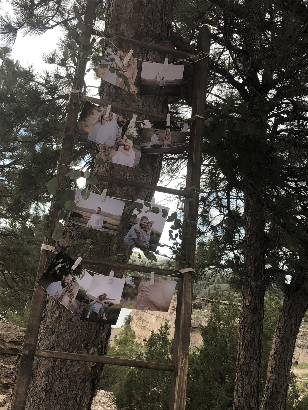 lake side wedding - family photos displayed on ladder leaning against tree
