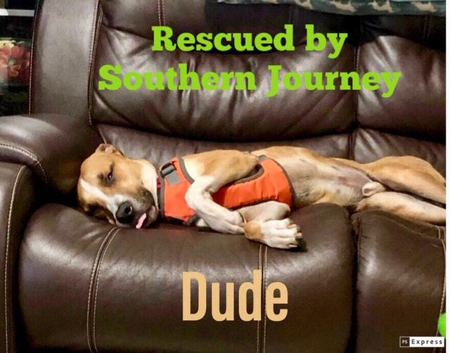 Dude - Southern Journey
