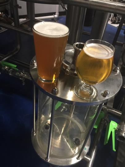 two different styles of beer in glasses on a table