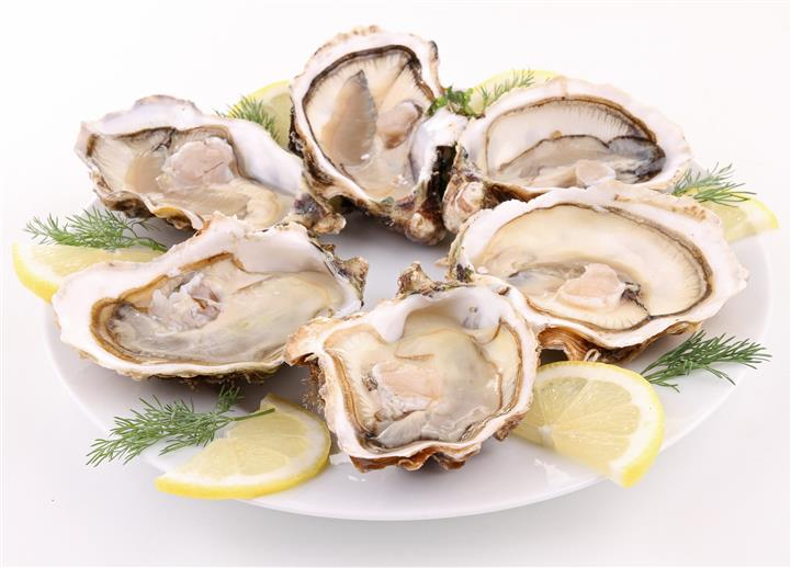 oysters on the half shell with lemon wedges