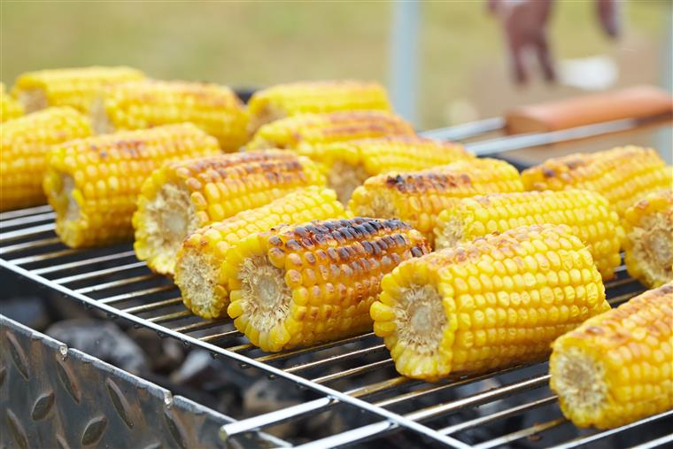 corn on the cobb on the grill