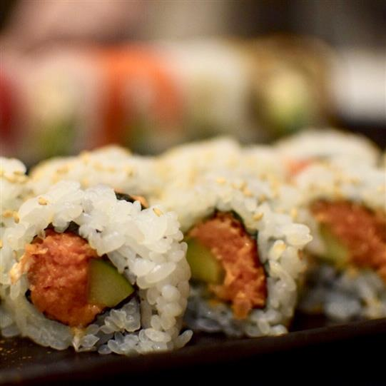 spicy tuna and avocado sushi rolls