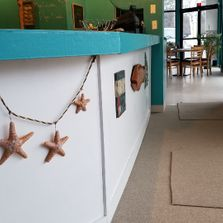 Interior shot of the bar with starfish