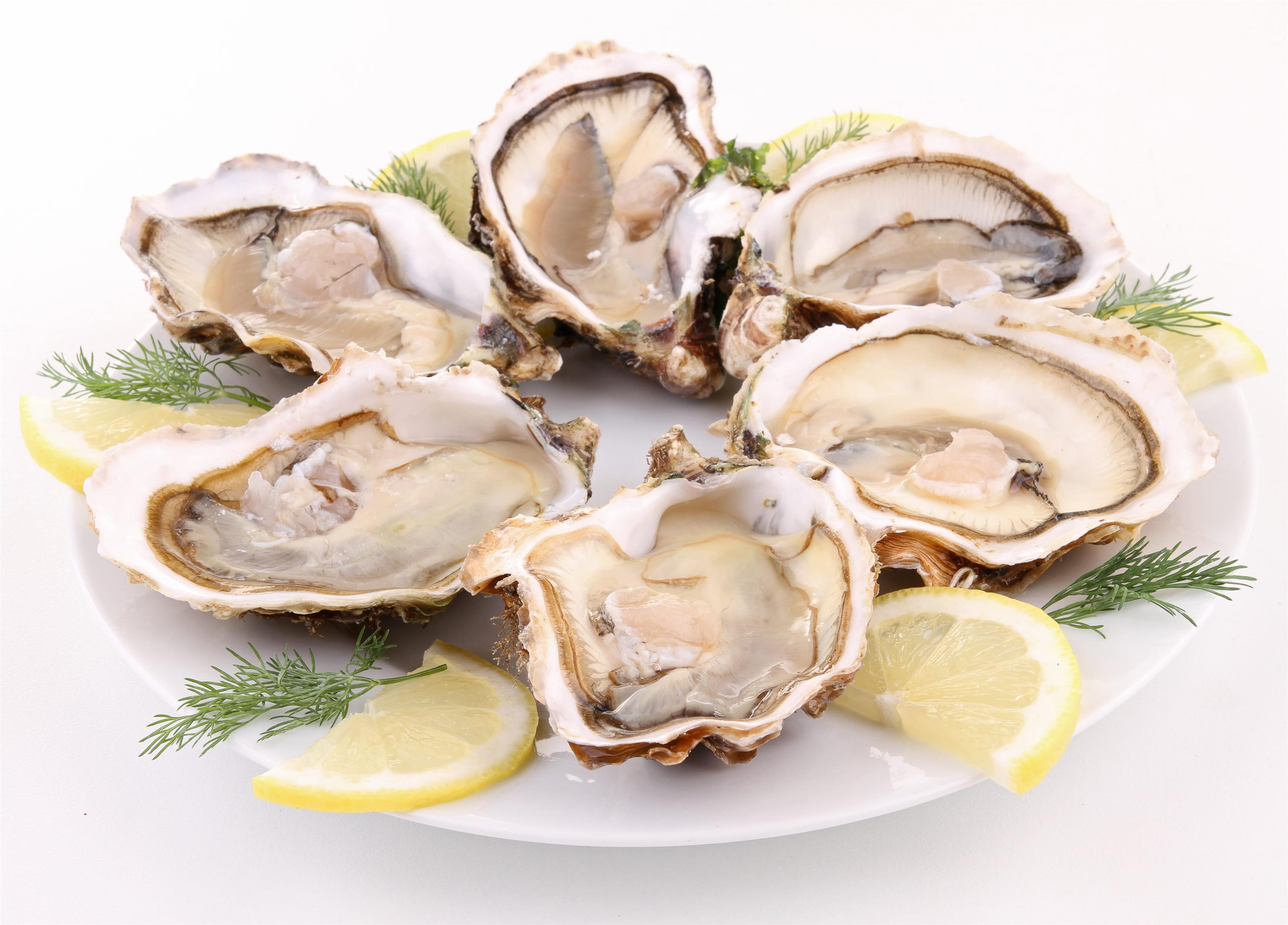 Six oysters on the half shell on a plate with lemon slices