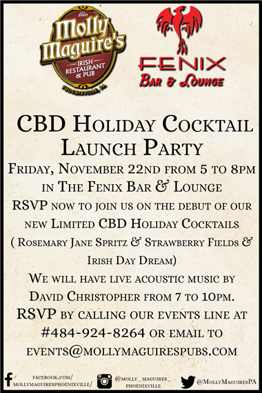 CBD Holiday Cocktail party