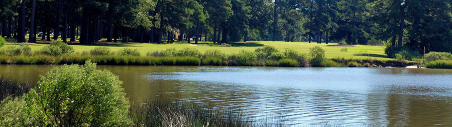 View of a pond beside a golf course