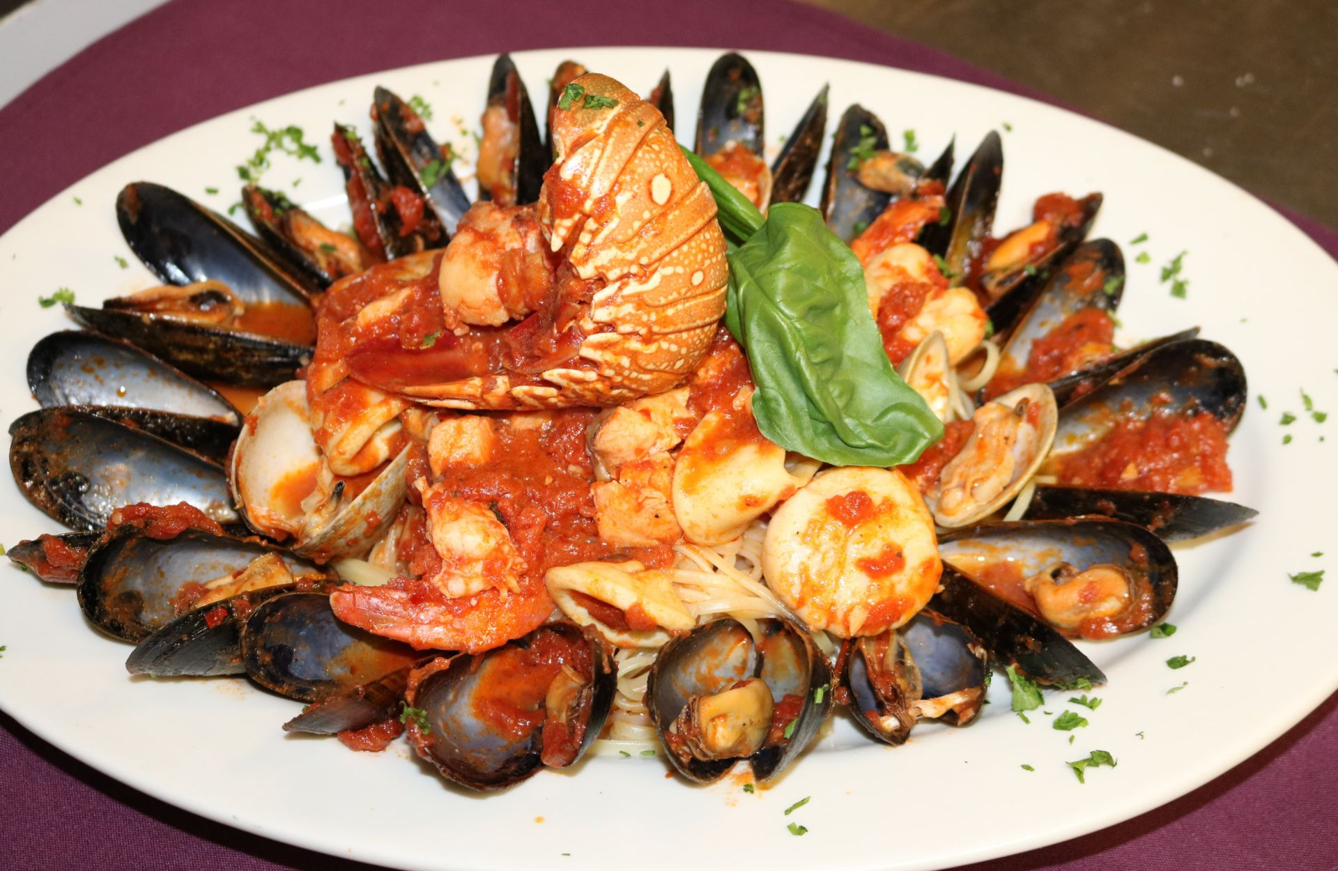 Mussles, calms, shrimp and lobster with marinara sauce and basil