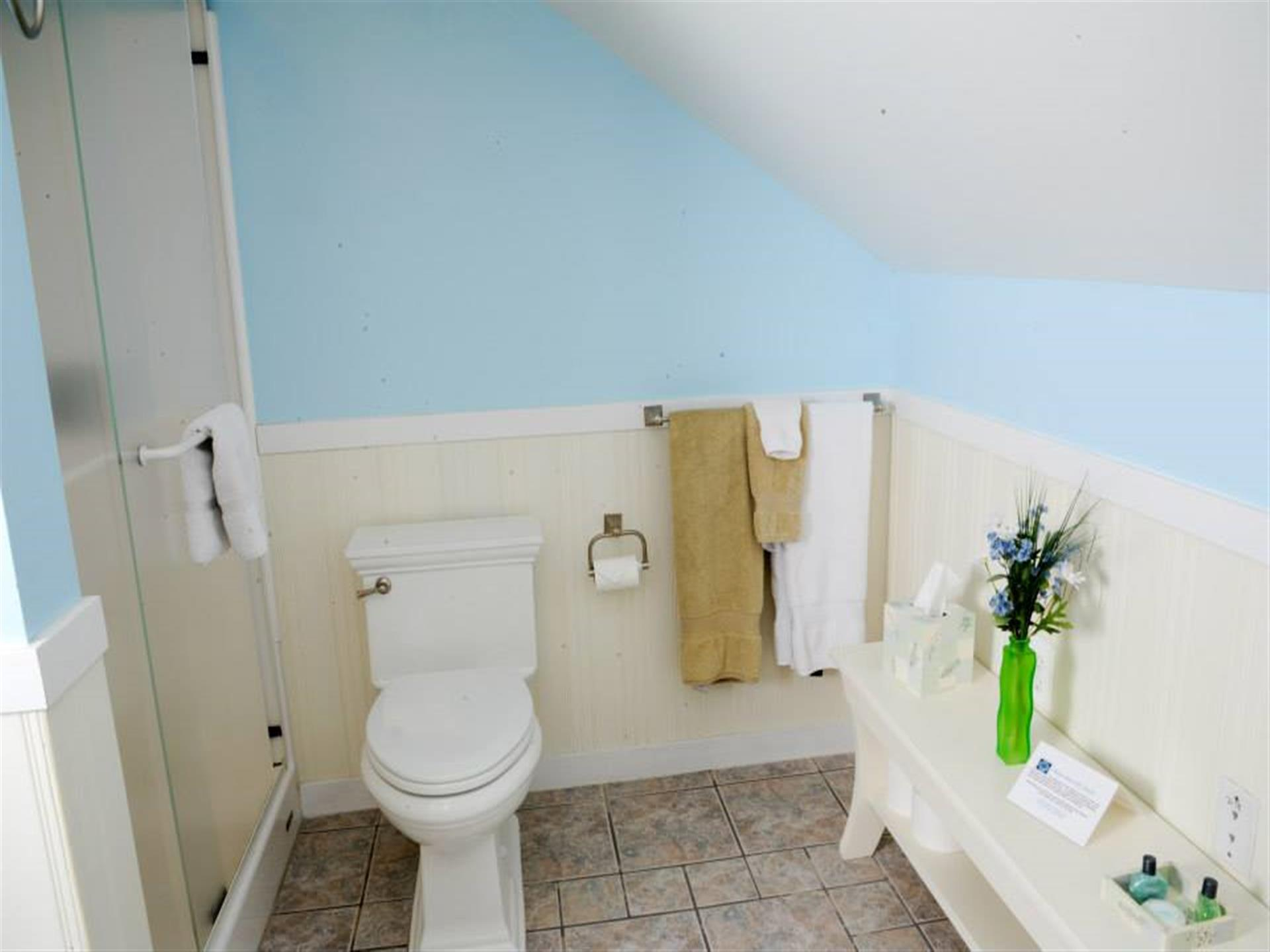 Suite 4 bathroom