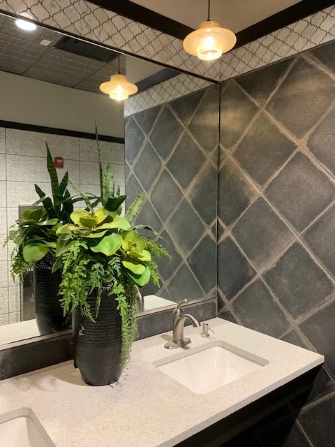 interior shot of bathroom counter with tile walls and a huge succulent green plant on counter