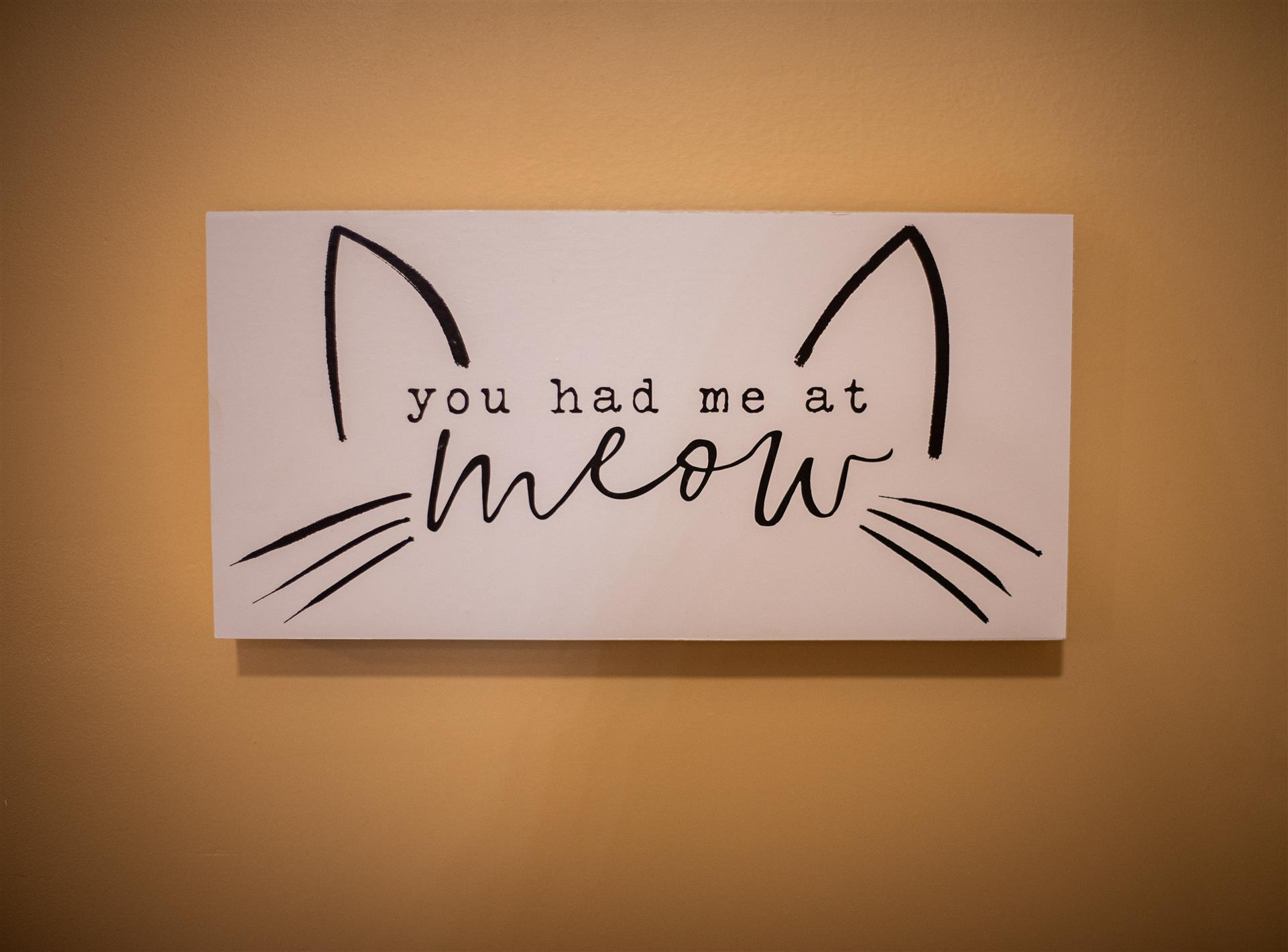 Sign saying You had me at meow.