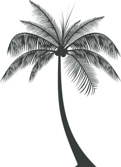 decorative palm tree silhouette