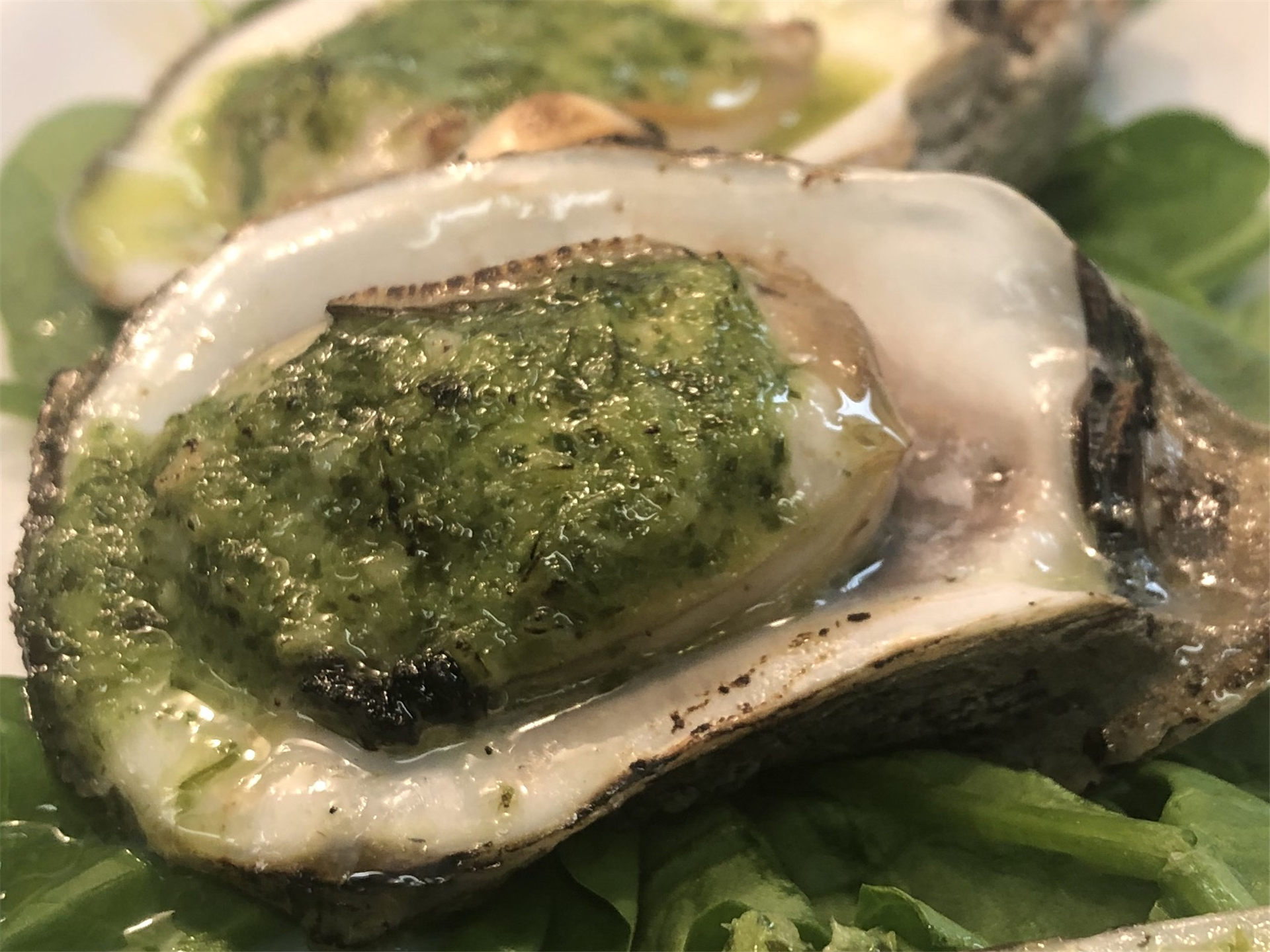 clam with green sauce