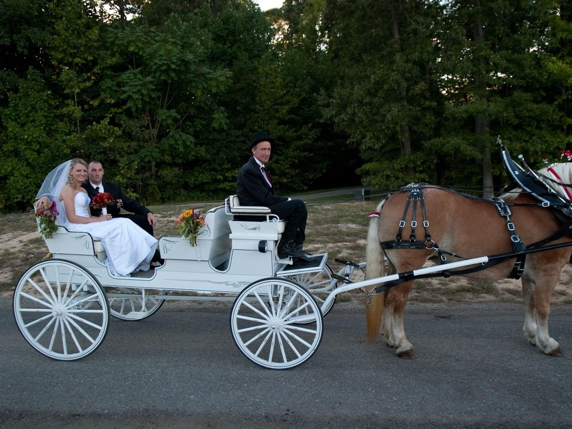 Bride and groom in a carriage being pulled by a horse