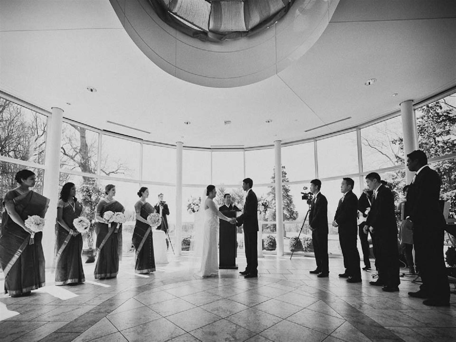 Bride and groom surrounded by bridesmaids and groomsmen