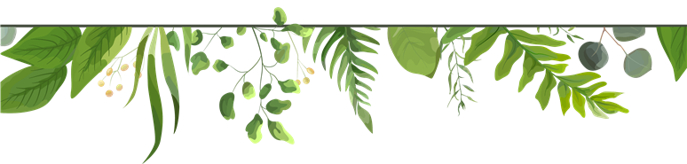 leaves and ivy vector