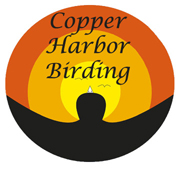Copper harbor birding