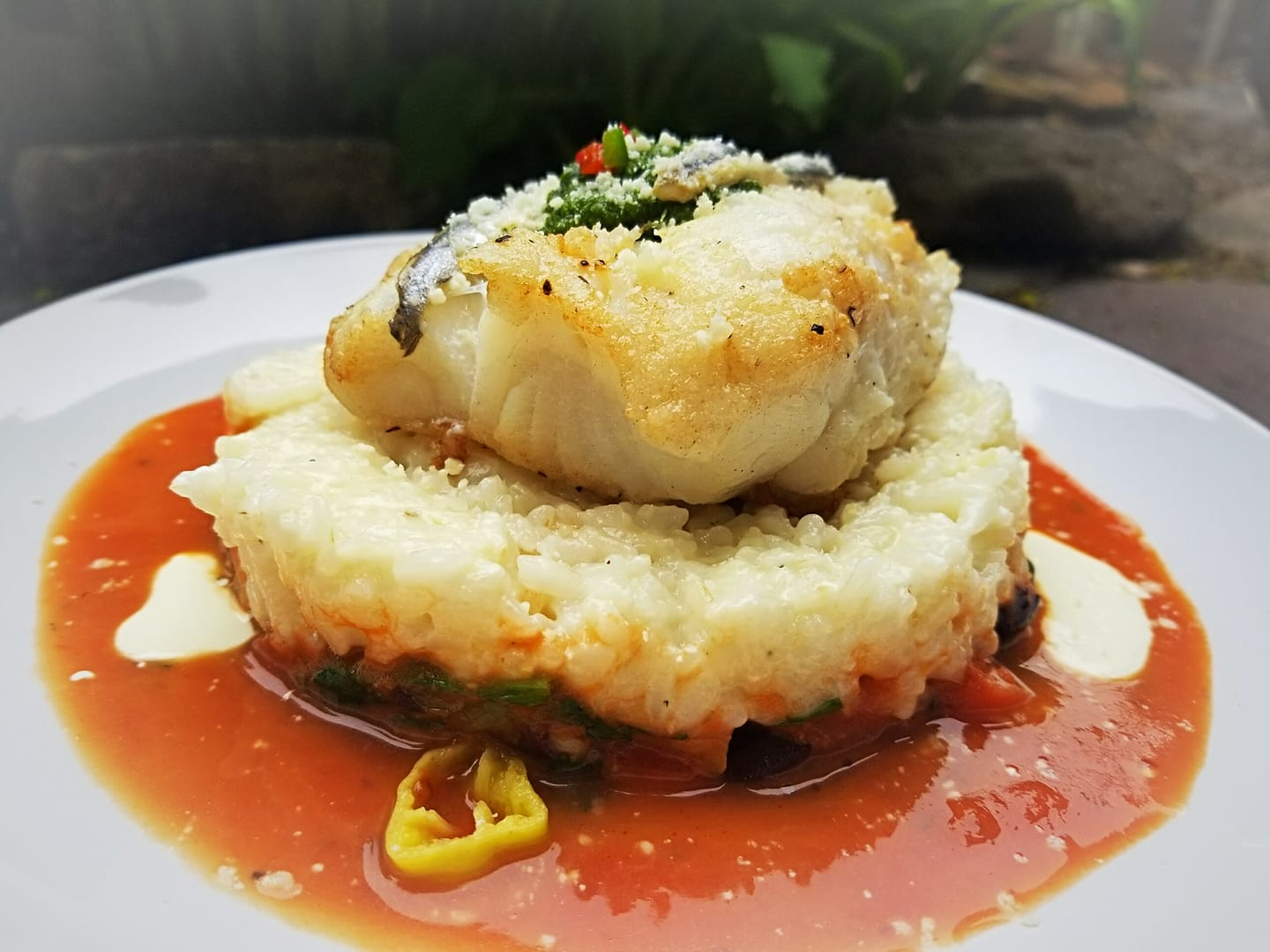 Cod Puttanesca topped with garnish on a white plate with sauce