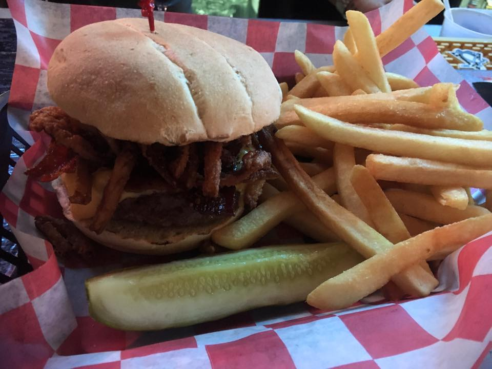 pulled pork sandwich with pickle and a side of french fries
