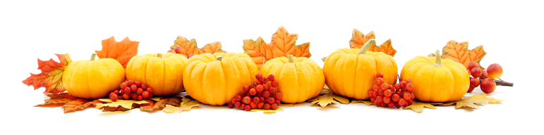 pumpkins with leave