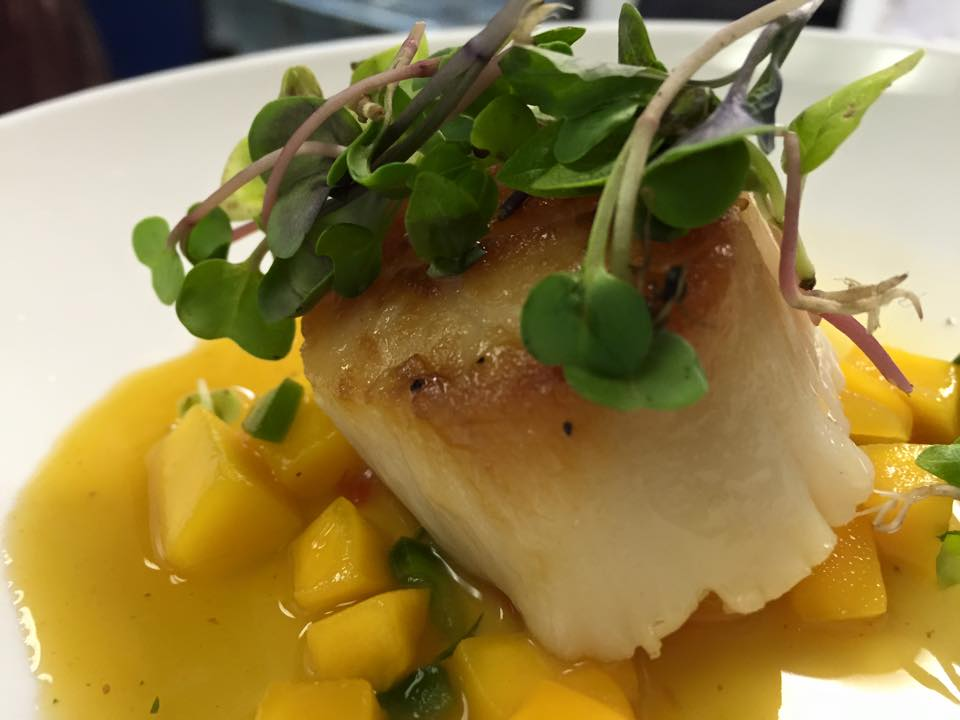 scallop over a mango sauce with micro greens