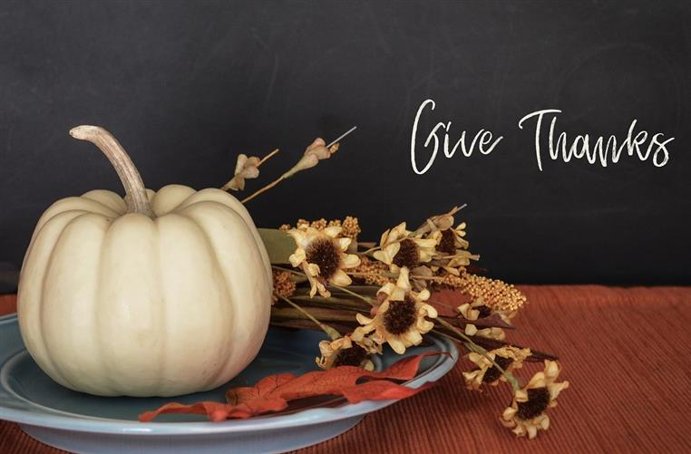 Thanksgiving setting with a white pumpkin and dried flowers on a serving plate. And, copy that reads, give thanks.