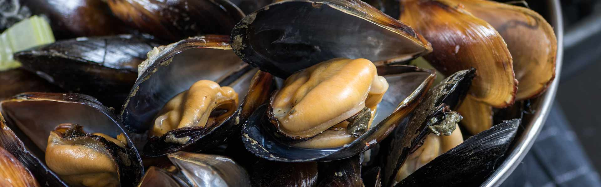 mussels steamed in white wine and garlic, served with garlic toast