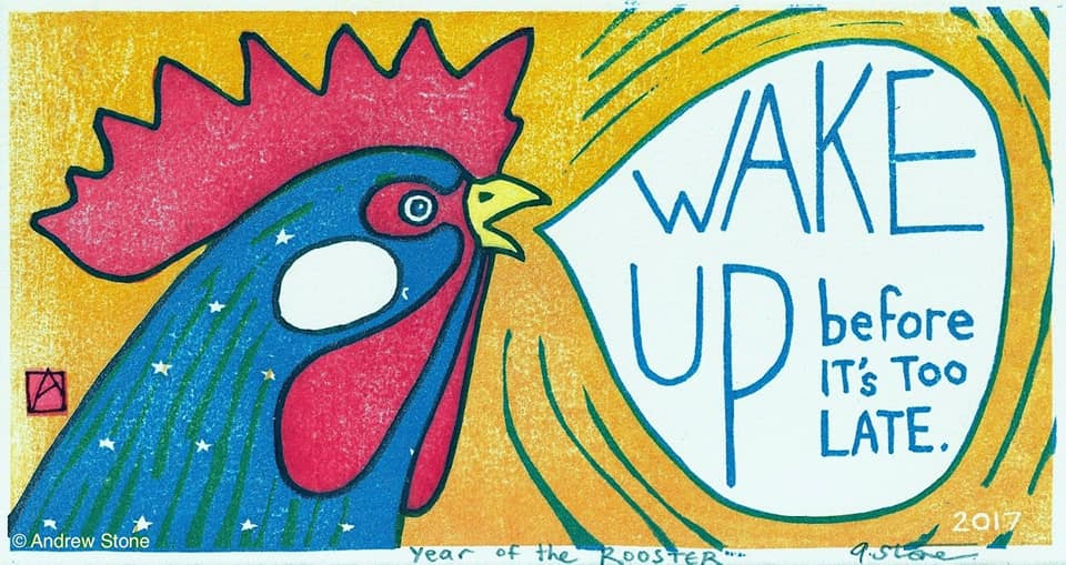 rooster yelling wake up
