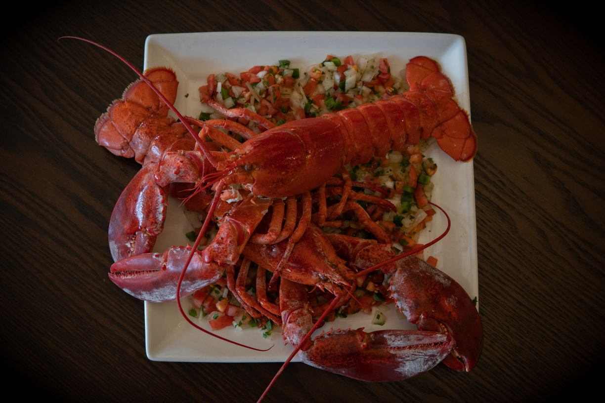 Two whole lobsters on a plate