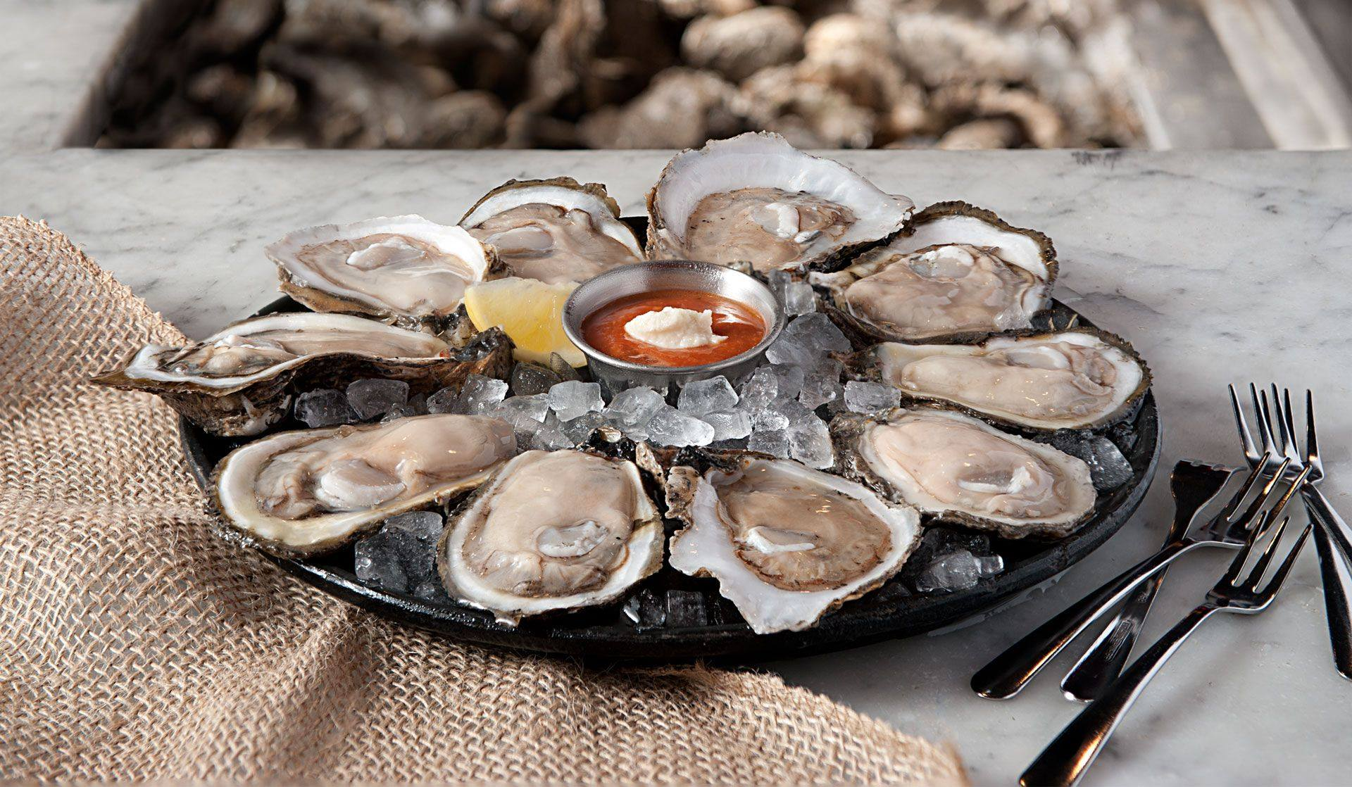 assortment of oysters on a tray with cocktail sauce