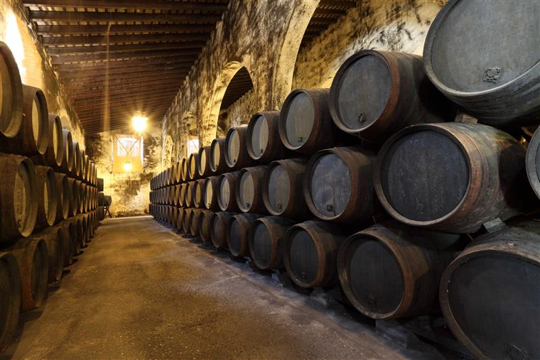 Wine barrels horizontally stacked in a basement