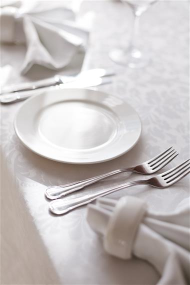 place setting with cloth napkins set up for a private party