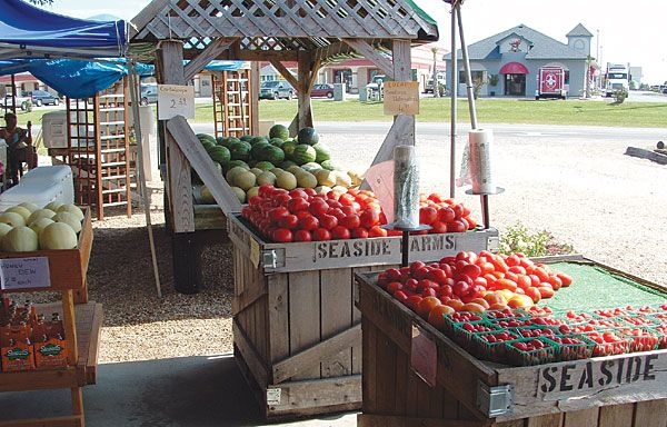 wooden crates outside at the farm stand with produce like apples, strawberries, melons, and other assorted goods