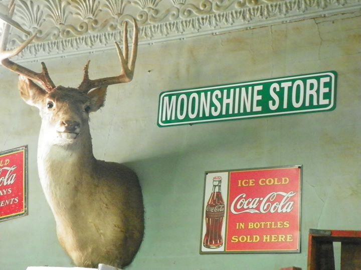 "buck head and sign that reads ""Moonshine Store"""