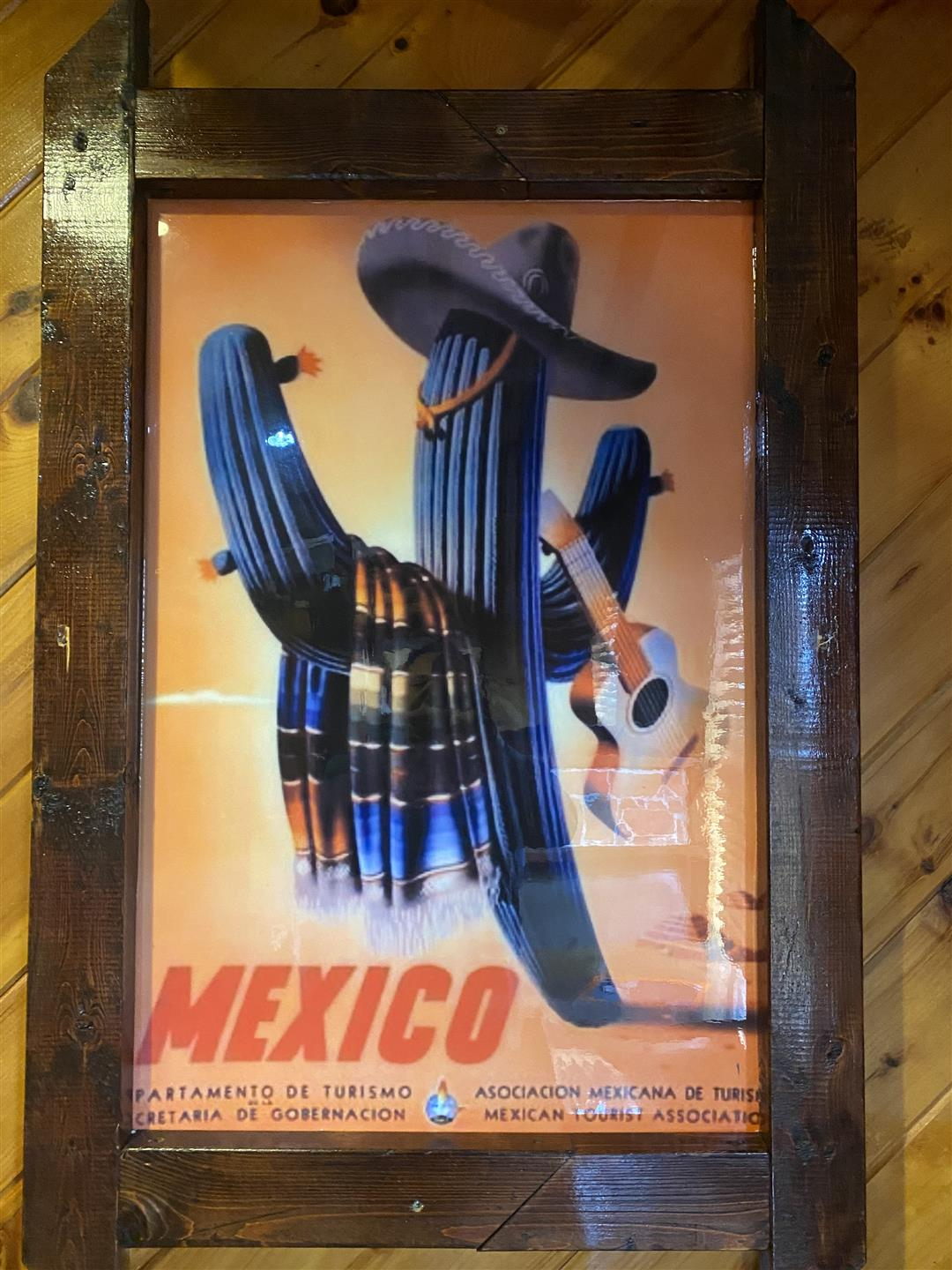 drawing of a cactus wearing a sombrero and holding a guitar