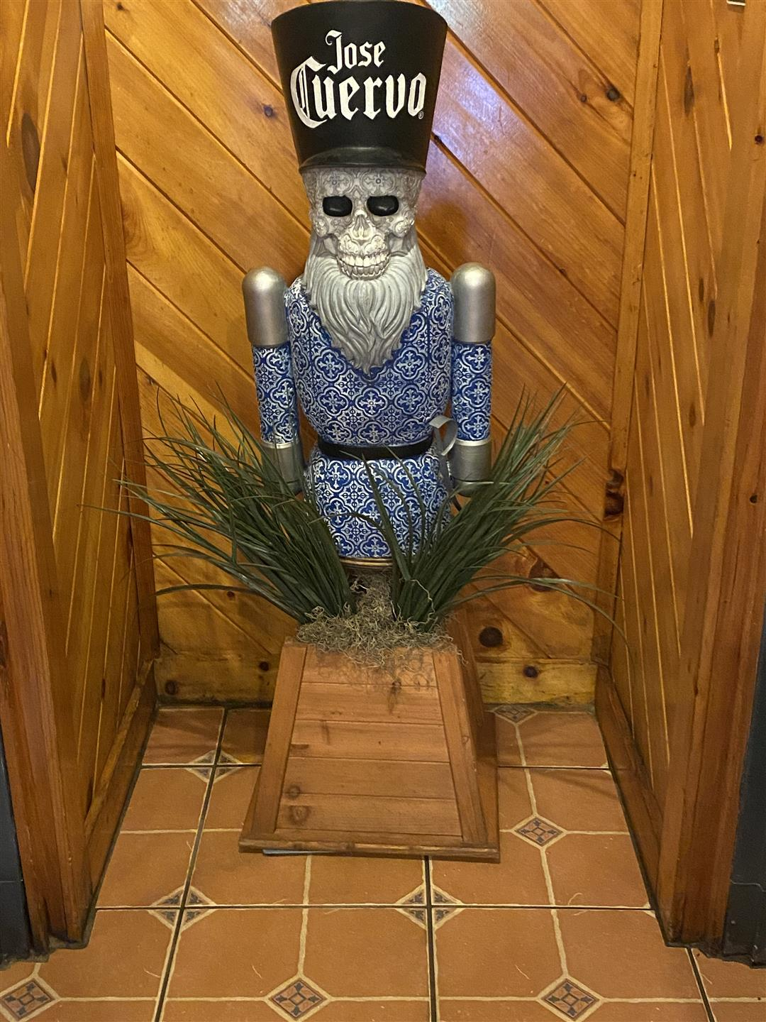 large mexican skeleton nutcracker standing behind a plant