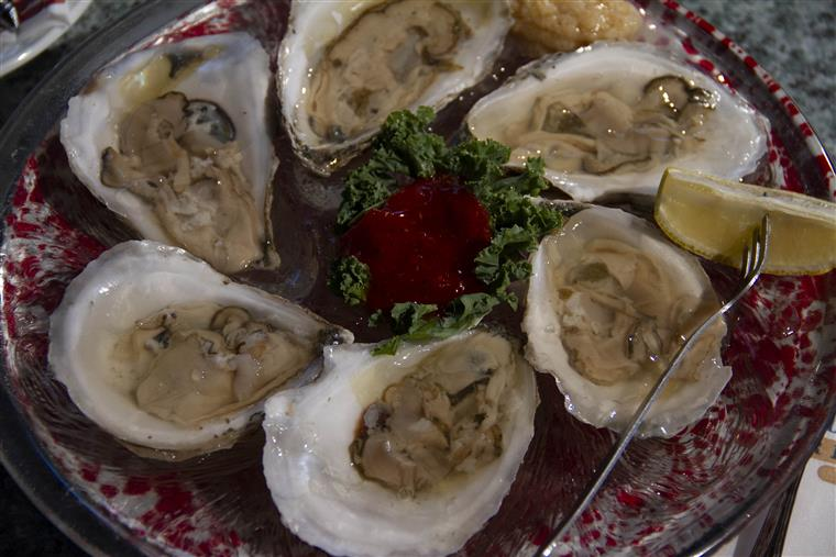 raw oysters on a platter with lemon and cocktail sauce