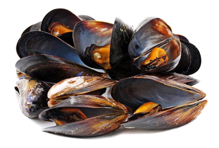 a bunch of steamed mussels