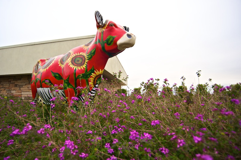 painted cow statue