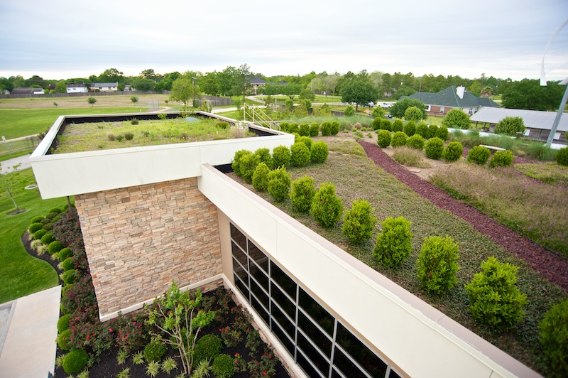 rooftop garden at the Green Event Center