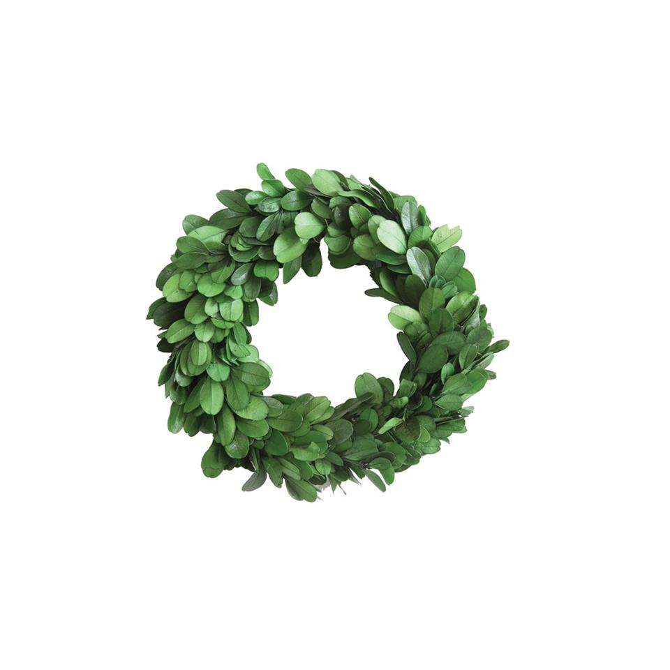 "6"" Preserved Boxwood Mini Wreath"