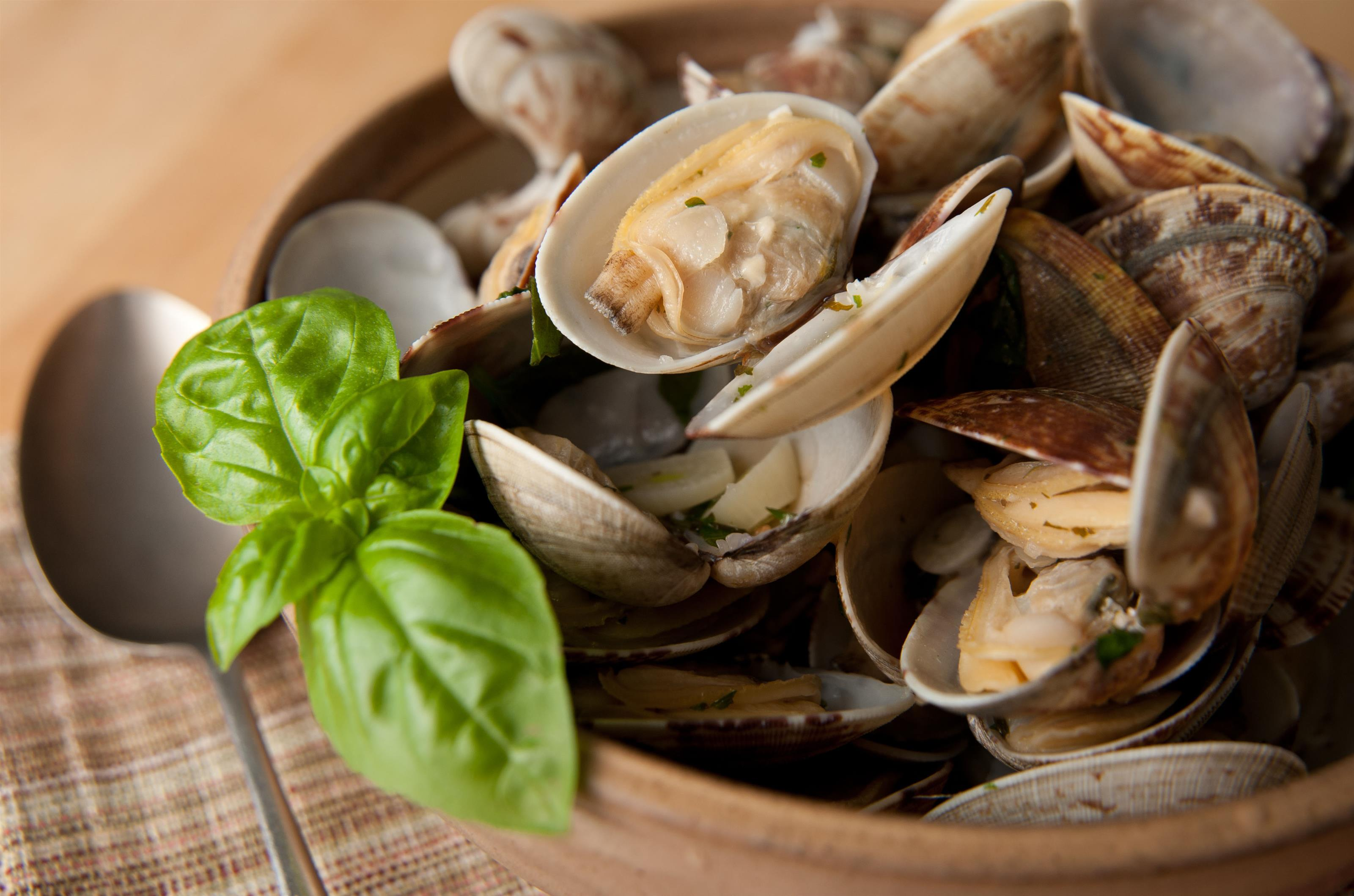 steamed little neck clams with basil