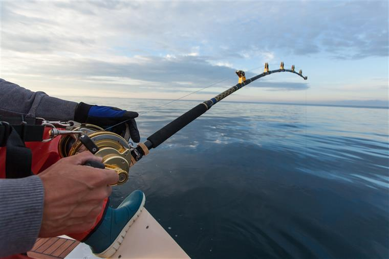 person holding a fishing rod over the water