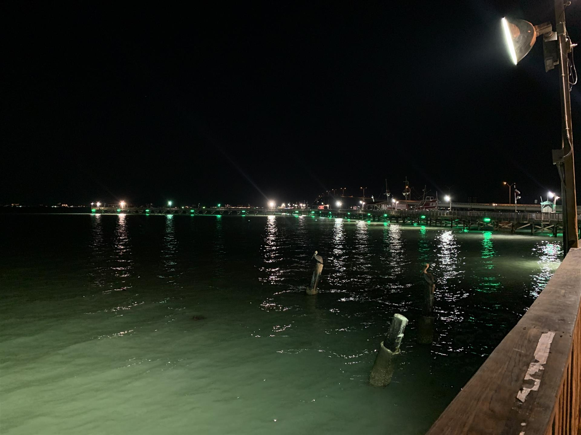 view of the water at night from the pier